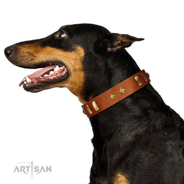 Comfy wearing quality full grain genuine leather dog collar with adornments