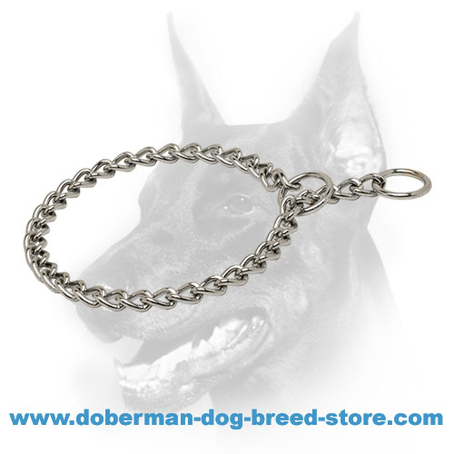 Training Doberman Choke Collar Chrome Plated Steel