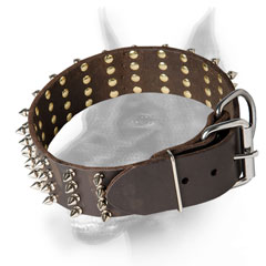 Doberman breed Leather Dog Collar for fashionable look