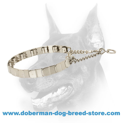 Pinch Neck Tech Metal Dog Collar for Correction of Behavior in Doberman