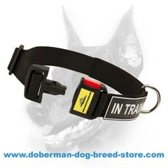 Easy adjustable dog collar made of nylon
