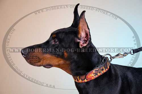Hand Painted Leather Doberman Collar
