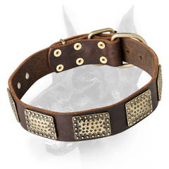First rate leather dog collar for Dobermans