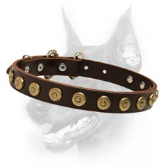 Designer leather dog collar