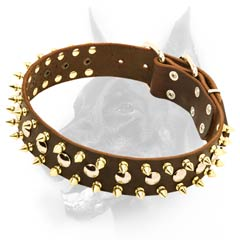 Spiked & studded leather dog collar