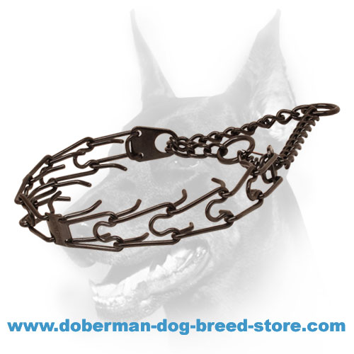 Doberman dog collar with two O-rings for leash attachment