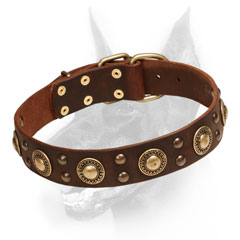 Leather Doberman Dog Collar with rich decoration