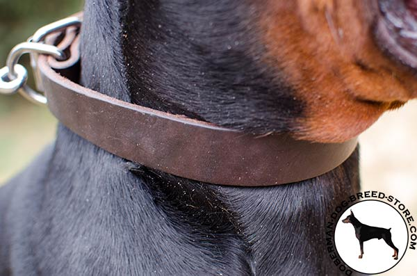 Comfortable leather collar for Doberman