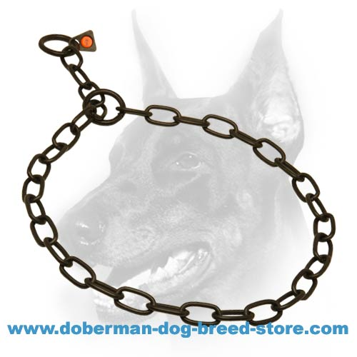 Doberman dog choke collar with black covering