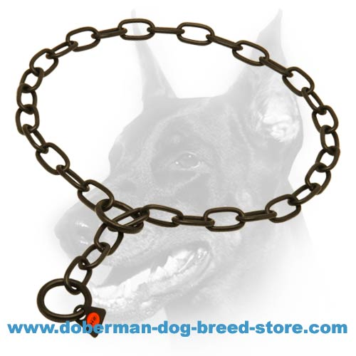 Doberman dog stainless steel fur saver for easy and non-painful education