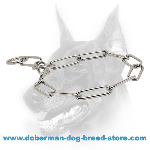 Doberman breed fur saver collar of chromium plated steel