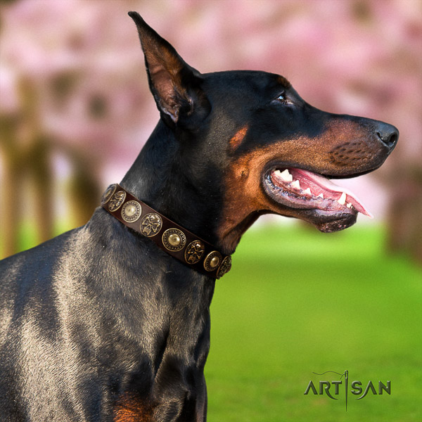 Doberman handy use natural genuine leather dog collar with studs