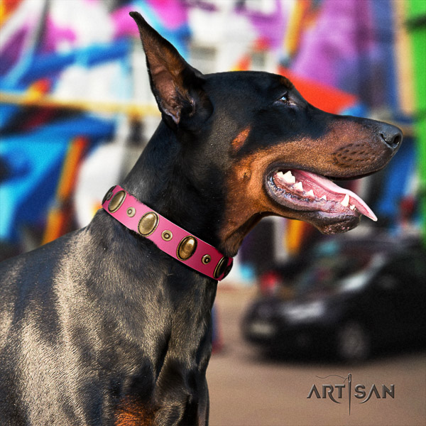 Doberman everyday walking genuine leather dog collar with decorations