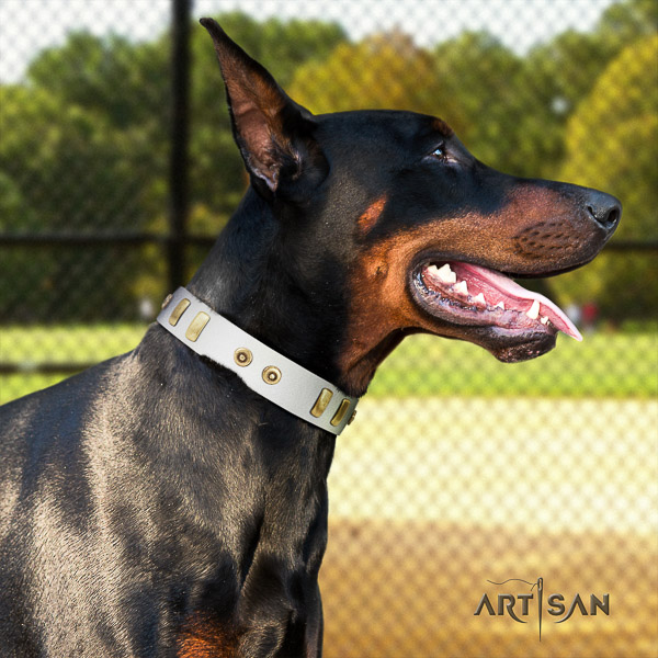 Doberman walking full grain genuine leather dog collar with studs