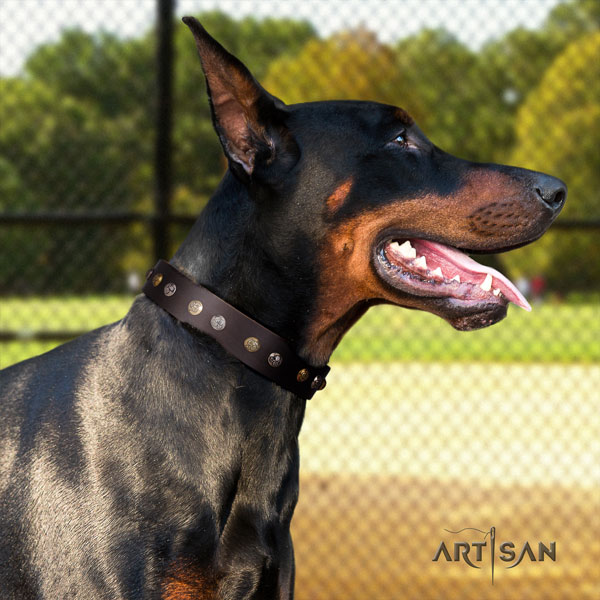 Doberman perfect fit full grain natural leather collar with decorations for your pet