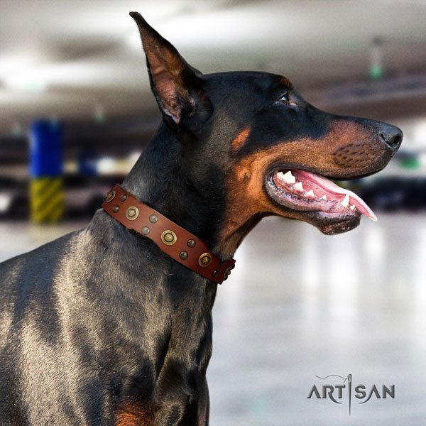 Doberman handmade natural genuine leather collar with embellishments for your pet