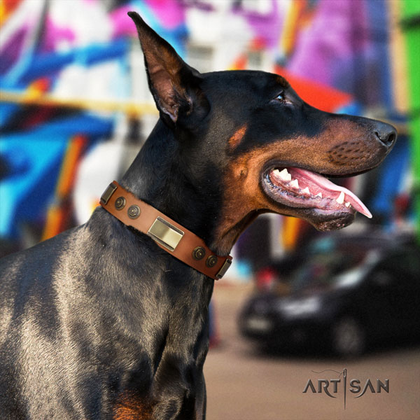 Doberman fine quality leather collar with embellishments for your four-legged friend