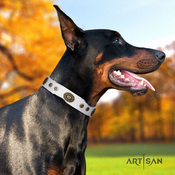 Doberman adjustable full grain genuine leather collar with embellishments for your canine