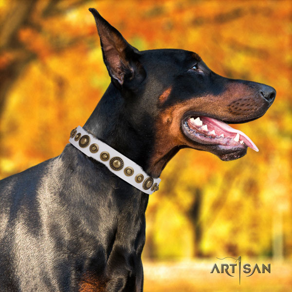 Doberman top notch full grain genuine leather collar with embellishments for your four-legged friend