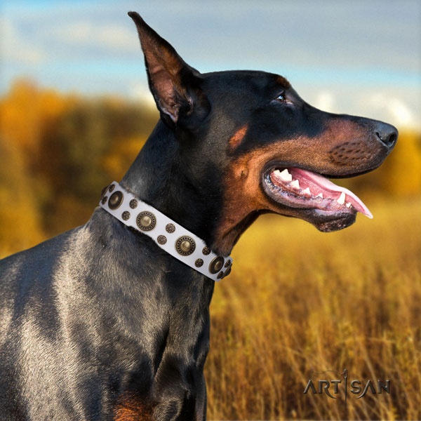 Doberman fine quality full grain genuine leather collar with adornments for your four-legged friend