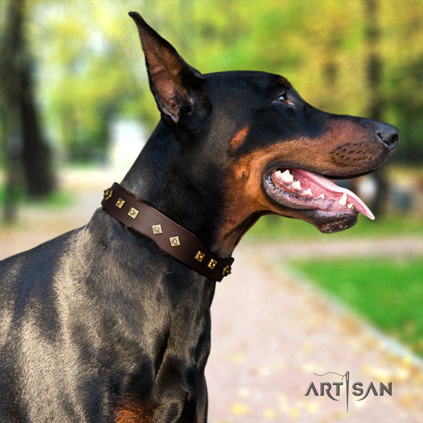 Doberman convenient full grain leather collar with adornments for your four-legged friend