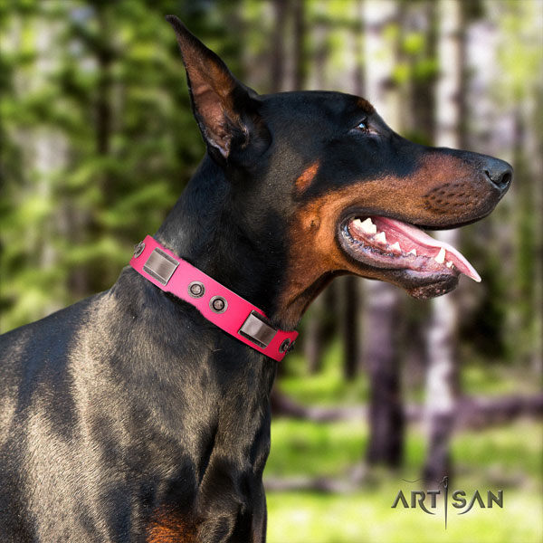 Doberman extraordinary leather collar with decorations for your four-legged friend