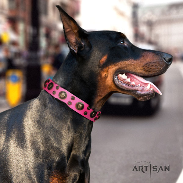 Doberman convenient natural genuine leather collar with studs for your dog