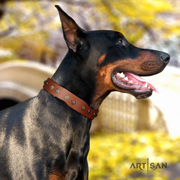 Doberman top quality full grain leather collar with decorations for your pet