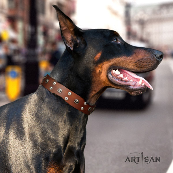 Doberman trendy leather collar with embellishments for your four-legged friend
