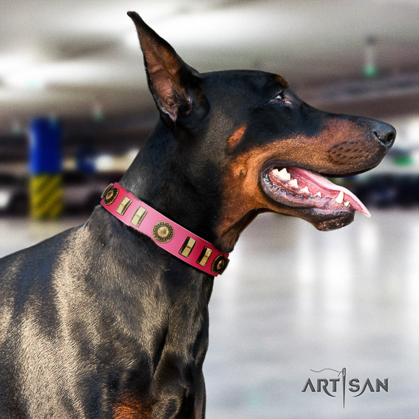 Doberman handy use full grain leather dog collar with studs