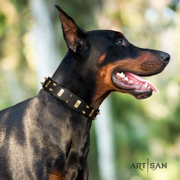 Doberman fashionable full grain leather collar with studs for your doggie