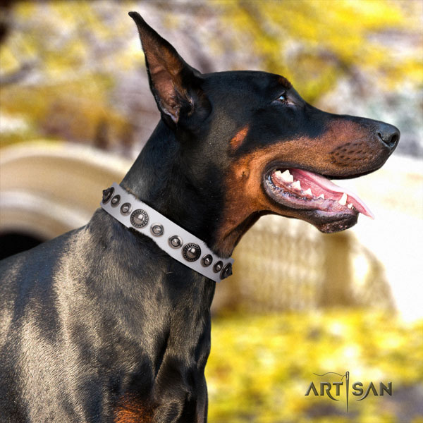 Doberman fashionable natural genuine leather collar with adornments for your canine