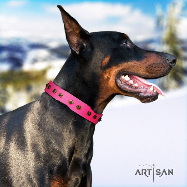 Doberman significant full grain natural leather collar with adornments for your doggie