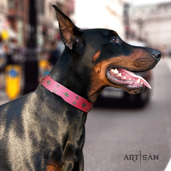 Doberman leather dog collar with adornments for everyday use
