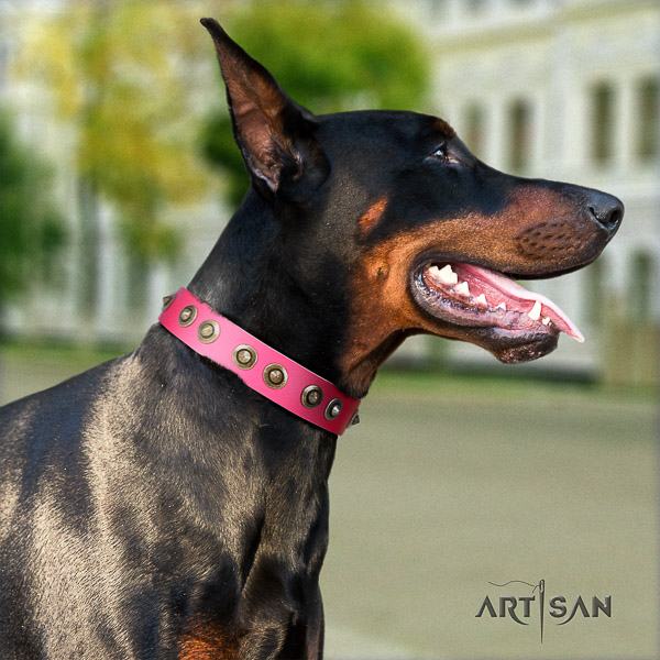 Doberman easy wearing full grain genuine leather dog collar with studs