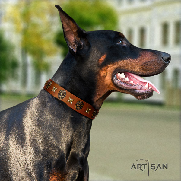 Doberman handy use genuine leather dog collar with studs
