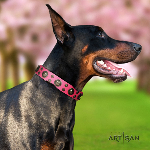 Doberman stunning genuine leather collar with adornments for your four-legged friend