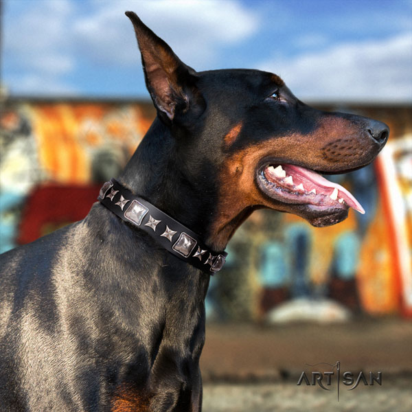 Doberman exquisite genuine leather collar with studs for your canine