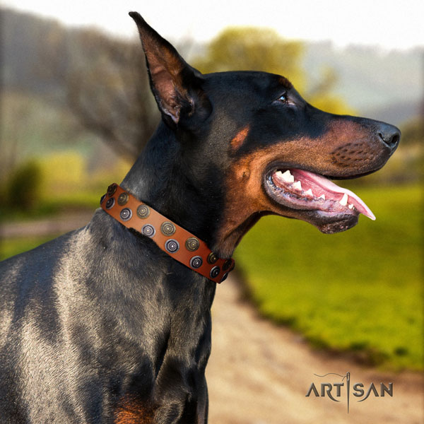 Doberman stylish full grain genuine leather collar with decorations for your canine