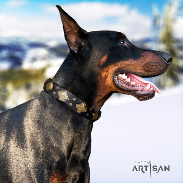 Doberman amazing natural genuine leather collar with studs for your dog