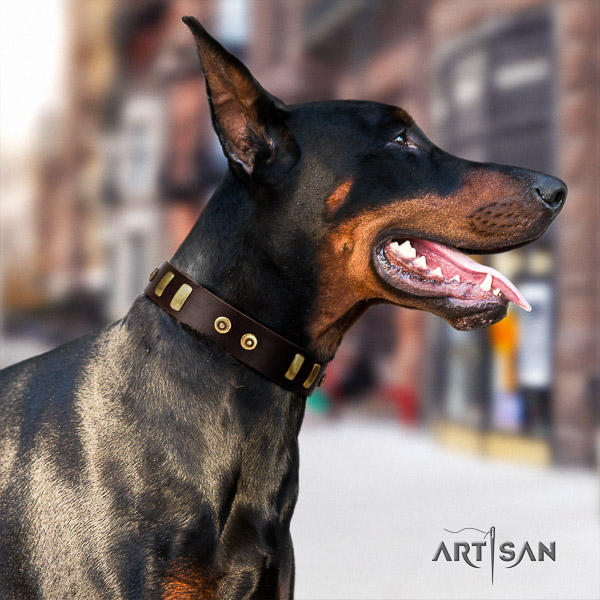 Doberman comfortable wearing leather dog collar with decorations