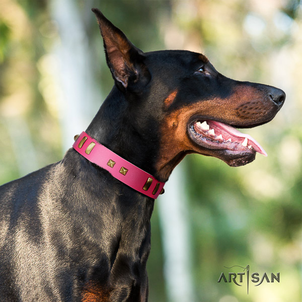 Doberman daily walking full grain leather dog collar with embellishments