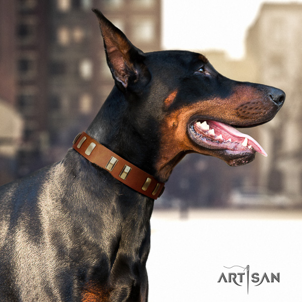 Doberman stylish walking genuine leather dog collar with adornments