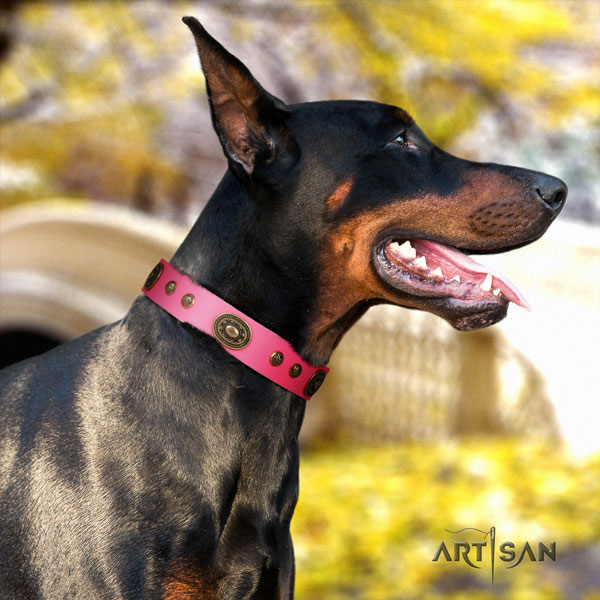 Doberman stylish genuine leather collar with embellishments for your doggie