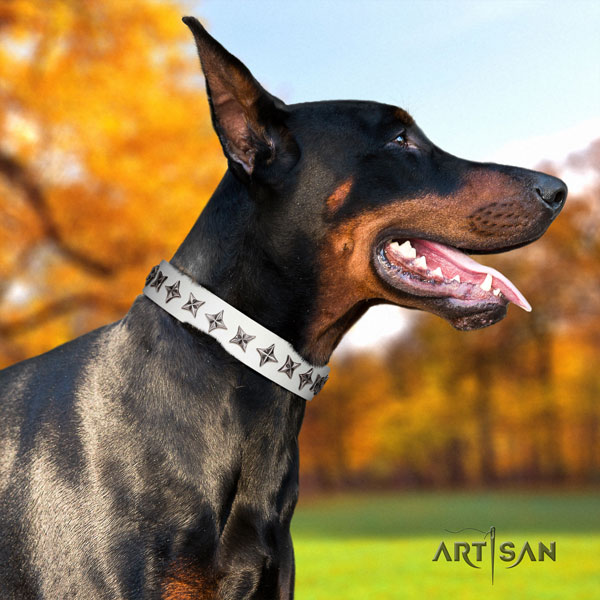 Doberman awesome natural genuine leather collar with adornments for your four-legged friend