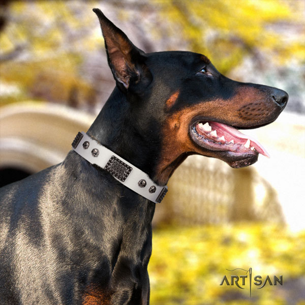 Doberman convenient leather collar with embellishments for your four-legged friend