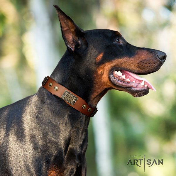Doberman significant full grain leather collar with studs for your four-legged friend