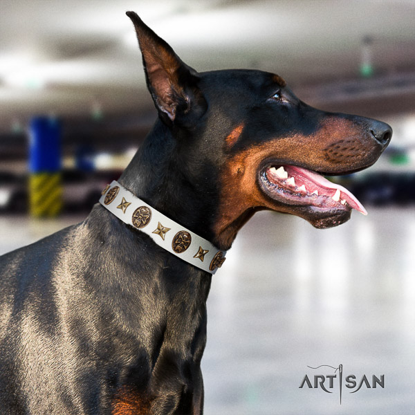 Doberman handy use full grain natural leather dog collar with decorations