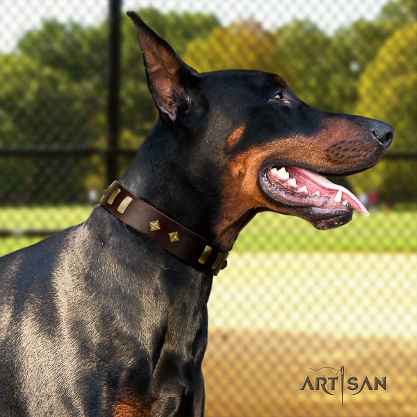 Doberman walking full grain natural leather dog collar with decorations