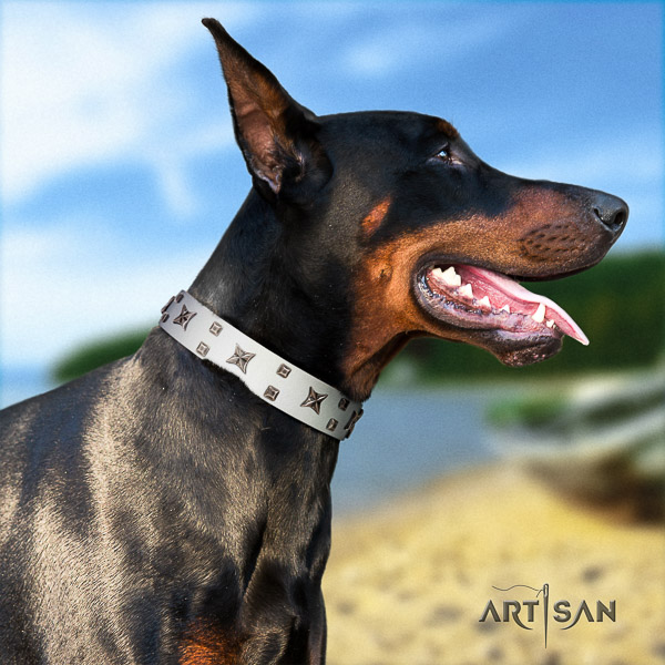 Doberman full grain genuine leather dog collar with studs for everyday use